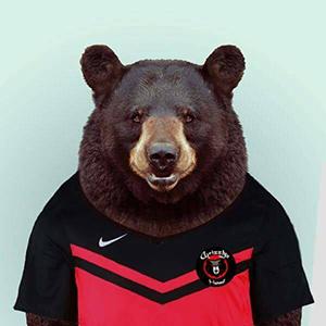 Grizzly du hainaut